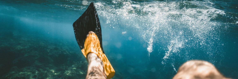 schwimmflossen_teaser