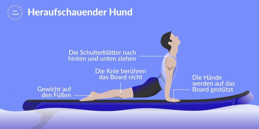 sup_yoga_heraufschauender_hund