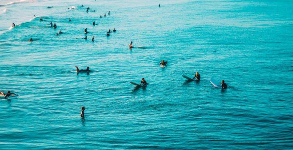 surfer-filme-literatur