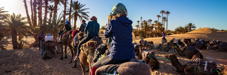 surfcamp morocco vergleich