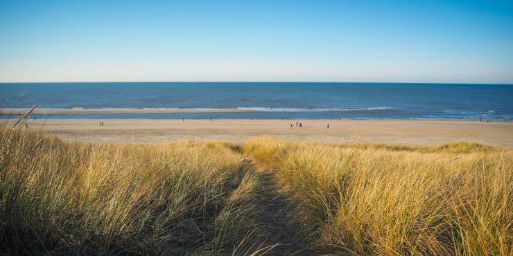 surfcamp_holland
