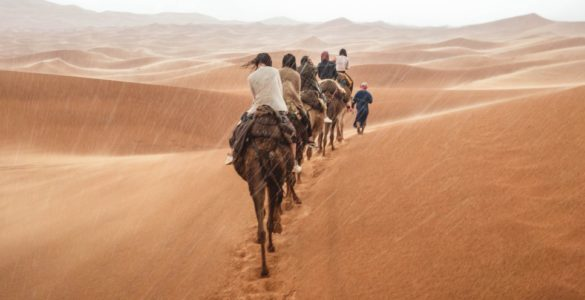 surfen-in-marokko-teaser