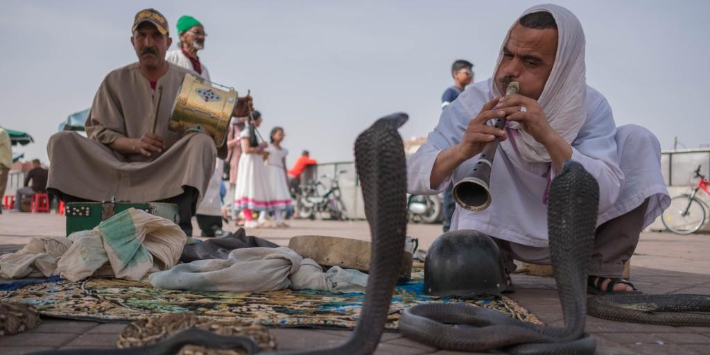 tipp-01-marrakech-djeemaa-el-fna