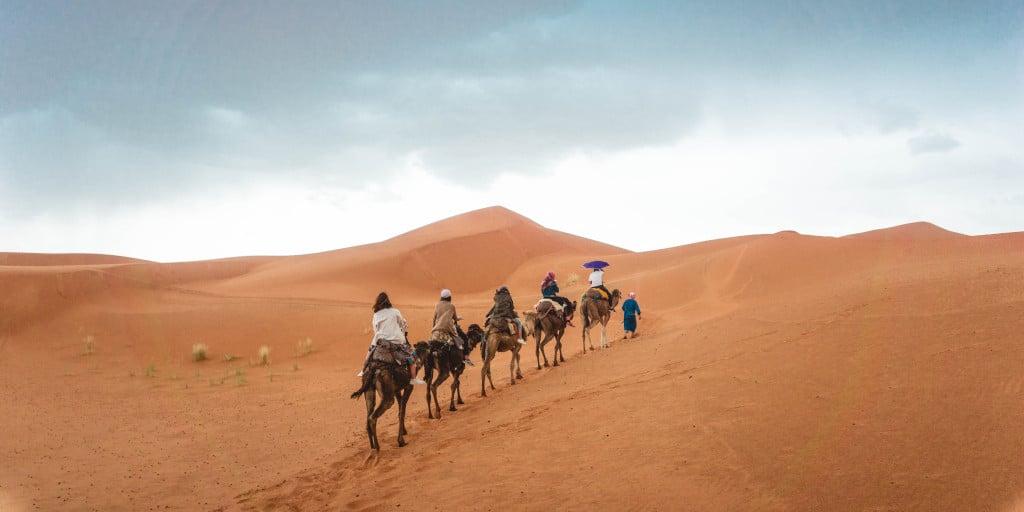 tipp-03-agadir-camel
